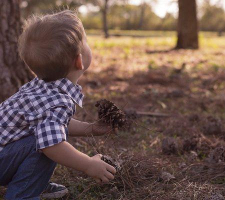 Le petit explorateur de la nature : un atelier en espagnol
